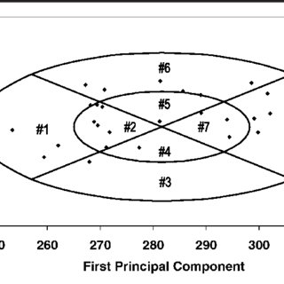 Description and diagram of key facial dimensions for