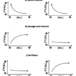 A scheme of anaerobic ammonium oxidation by