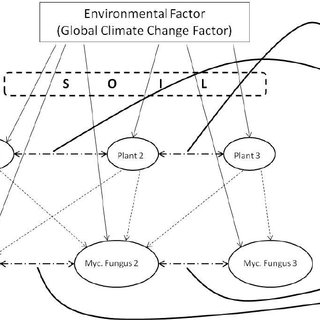 Direct and indirect impacts of an environmental factor