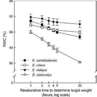 (PDF) Plant Responses to Drought Stress