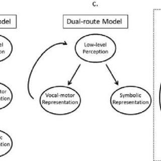 (PDF) Symbolic and Motor Contributions to Vocal Imitation