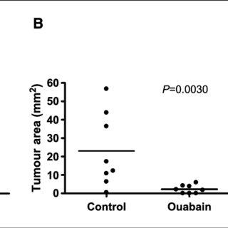 (PDF) Inhibition of the Sodium Potassium Adenosine Triphosphatase Pump Sensitizes Cancer Cells