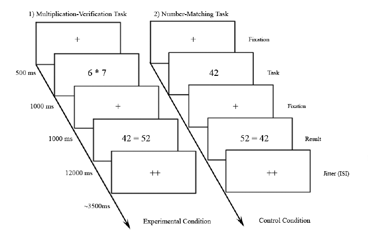 Cognitive resource allocation dissociates task-general and