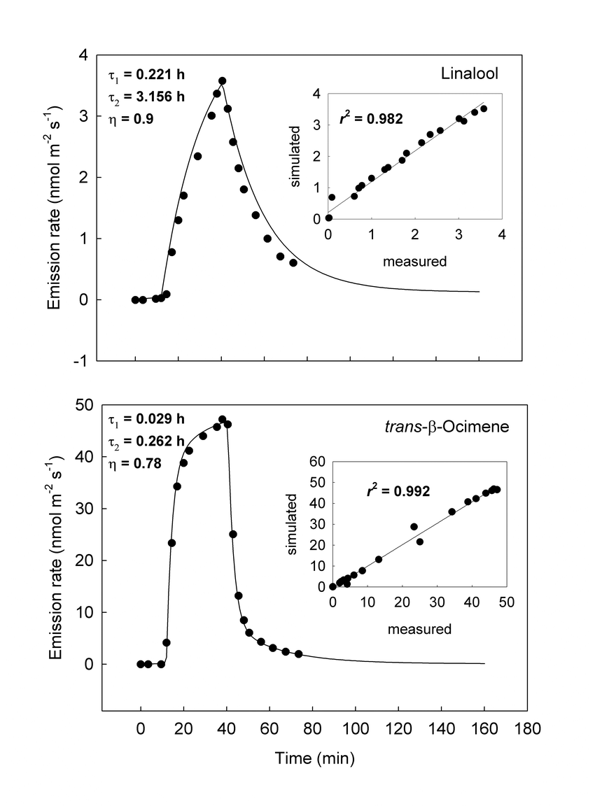 hight resolution of 13 c labelling and de labeling rates in needles of p pinea at a needle temperature of t 303 15 k