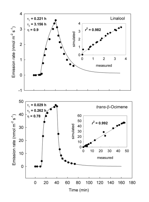 small resolution of 13 c labelling and de labeling rates in needles of p pinea at a needle temperature of t 303 15 k