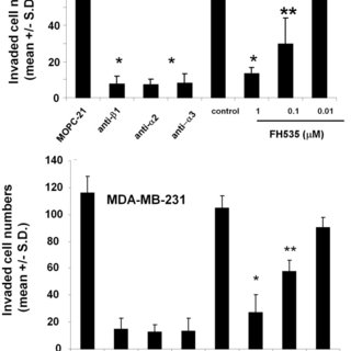 (A) MDA-MB-231 or HCC38 cells were cultured in the