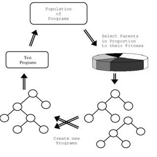 (PDF) Genetic Programming Based Model Structure