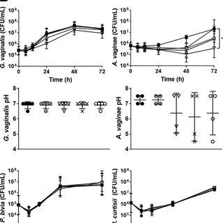 (PDF) Evaluation of lactitol, lactulose, raffinose, and