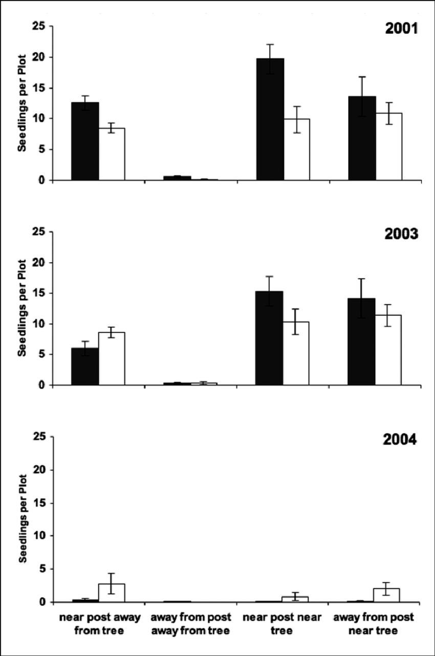 hight resolution of mean shrub seedling counts for perch post and pine tree treatments for three years 2001