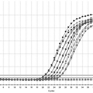 (PDF) Analysis of mRNA expression by real-time PCR