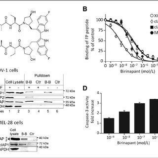 (PDF) Birinapant (TL32711), a bivalent SMAC mimetic