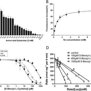(PDF) Identification of novel inhibitors of the amino acid