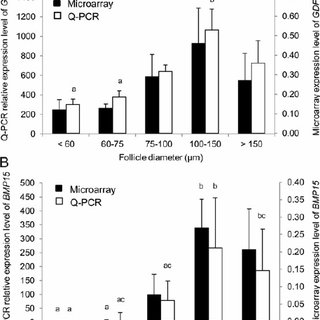 Quantification of relative expression of GDF9 ( A ) and