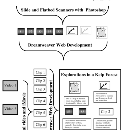 a flow diagram of the processing of image materials in the development of these web pages [ 850 x 1261 Pixel ]