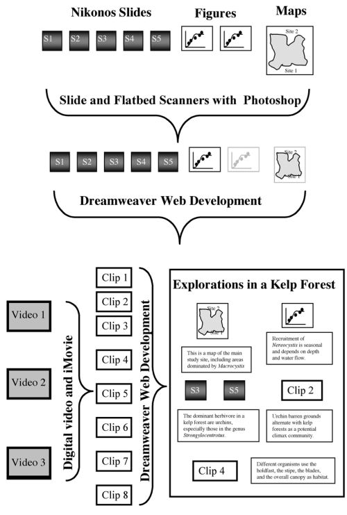 small resolution of a flow diagram of the processing of image materials in the development of these web pages