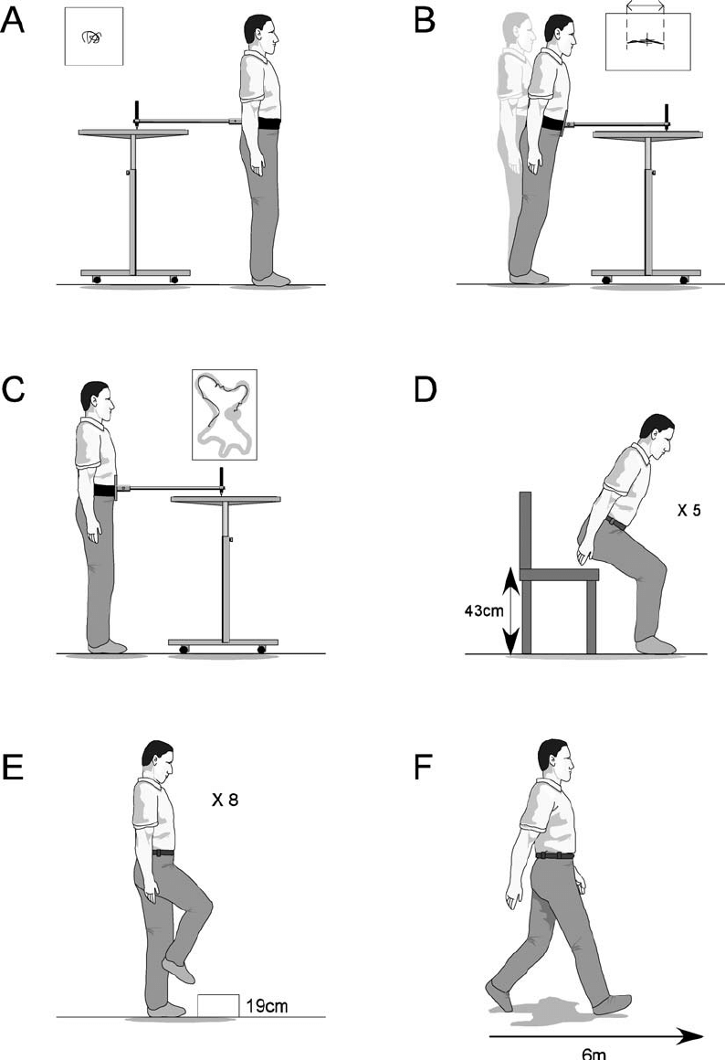 Balance and functional tests. A, postural sway; B, maximal