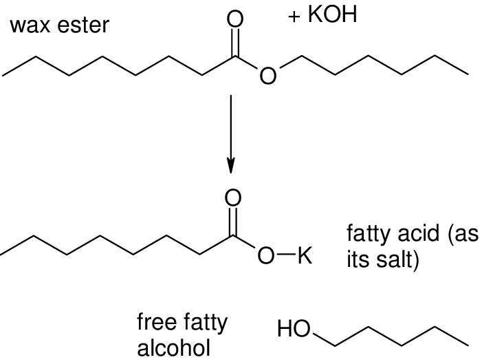 3 The saponification process leaving free fatty alcohols