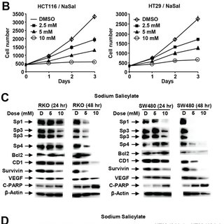 Inhibition of RKO and SW480 (A) and HCT116 and HT29 (B