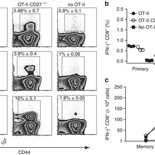 (PDF) The CD4(+) T-cell help signal is transmitted from