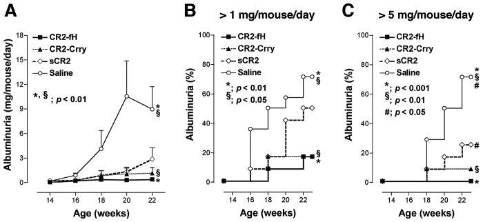 Albuminuria in MRL/lpr mice. A, Urinary albumin excretion
