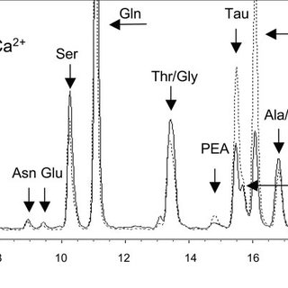 HPLC chromatogram showing the pattern of amino acid efflux