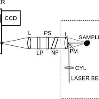 (PDF) Relative Intensity Correction of Raman Spectrometers