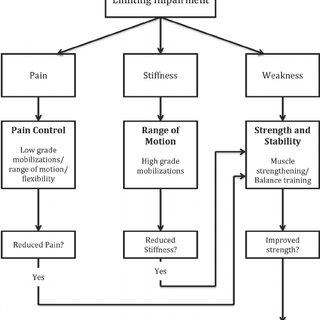 (PDF) Non-operative Management of Femoroacetabular