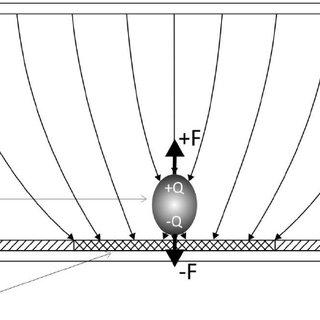 The optoelectronic Tweezers (OET) optical setup