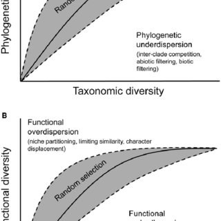 (PDF) Phylogenetic and functional underdispersion in