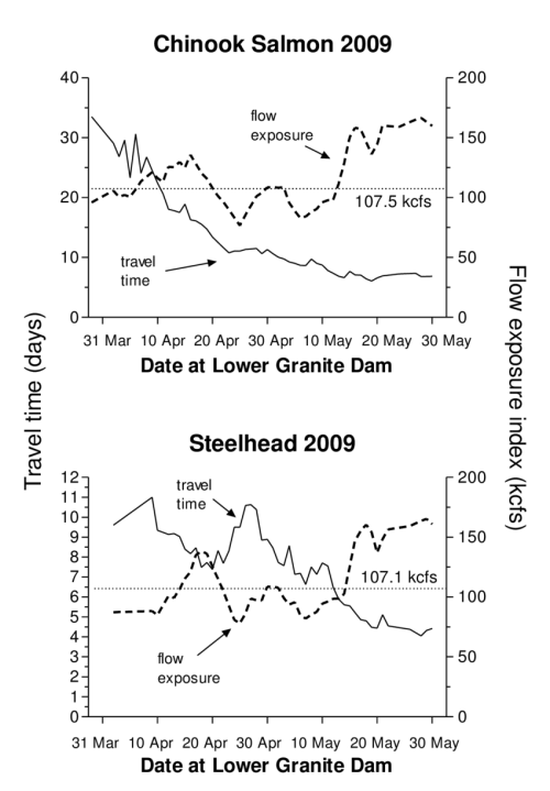 small resolution of travel time days for yearling chinook salmon and steelhead from lower granite dam to