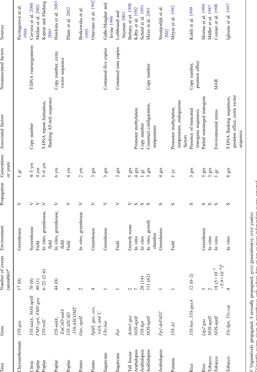Summary of studies on stability of transgene expression in