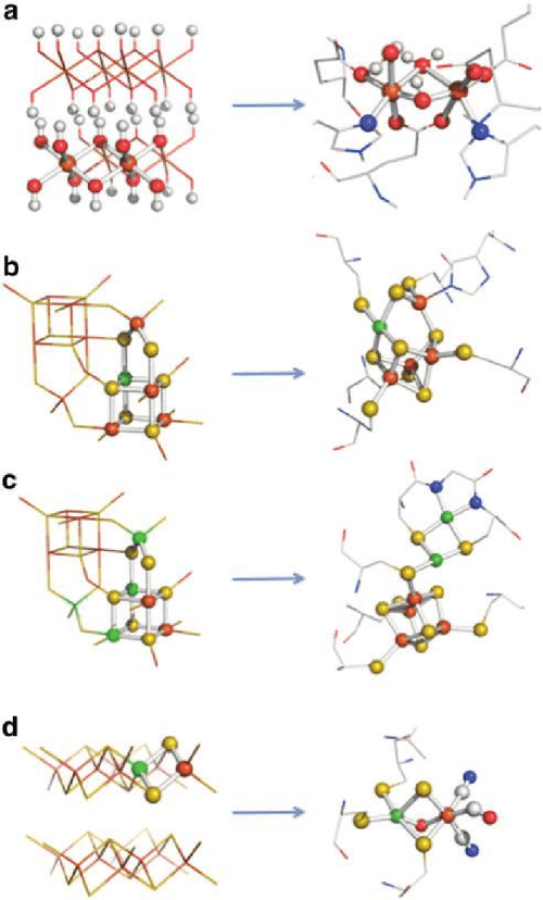 small resolution of structural comparisons between transition element sulfides and oxides of the kind found in the precipitate membranes