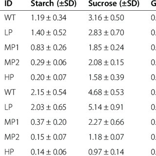 Effect of PHB production on starch, sucrose and glucose