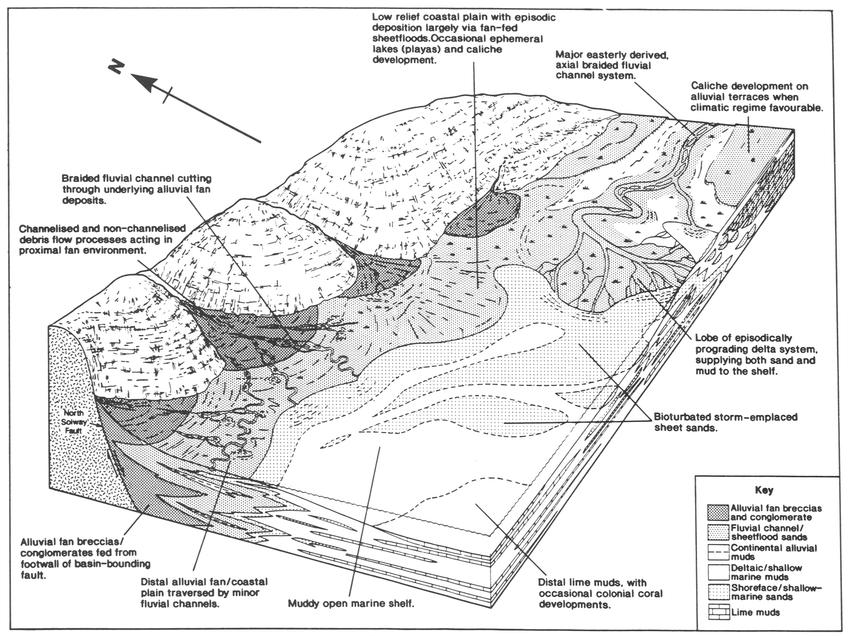 Schematic representation of Dinantian depositional