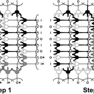 Integrate-and-fire neuronal behaviors. (A) The Hodgkin
