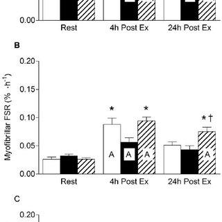 (PDF) Low-Load High Volume Resistance Exercise Stimulates