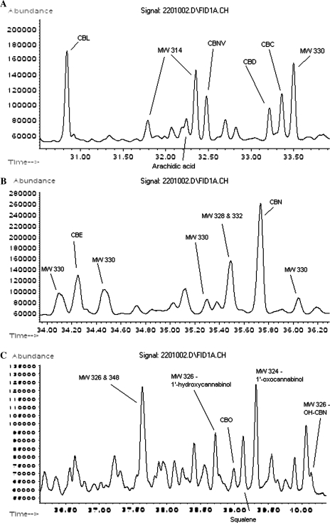 Gas chromatography of ancient cannabis subsections. (A) GC