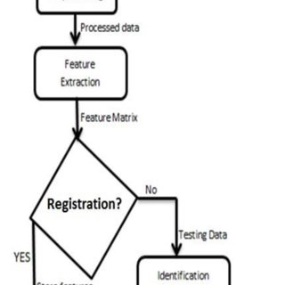 (PDF) EEG Based Biometric Authentication with Reduced