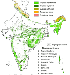 distribution of level 1 forest types across biogeographic zones of india [ 850 x 1055 Pixel ]