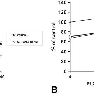 The B-Raf inhibitor PLX4720 suppressed the growth of BRAF