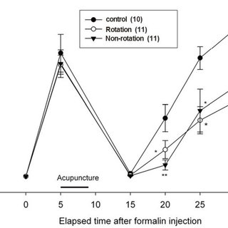 Pain responses in the formalin test when acupuncture began
