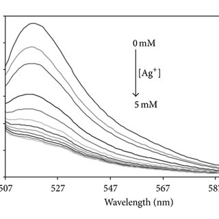 (PDF) Fluorescein-Labeled Starch Maleate Nanoparticles as