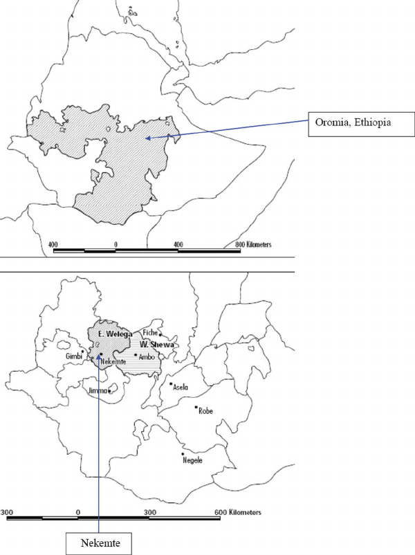 Location of the study site in Ethiopia, East Wellega