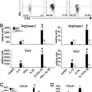 IL-33 enhances the polarization of AAM. A-C, BM cells from