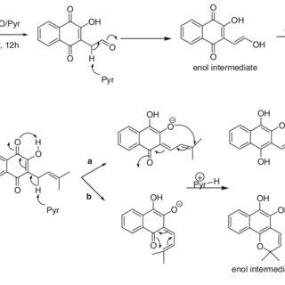 Scheme 2 Mechanism of Ac 2 O/pyridine acetylation of the