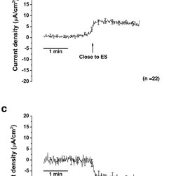 Structures and chemical compositions of endolymph of the