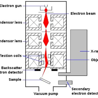 2 Schematic for the scanning electron microscope. The