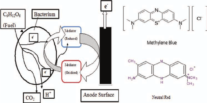 Overview of the working principle of a mediator in a MFC