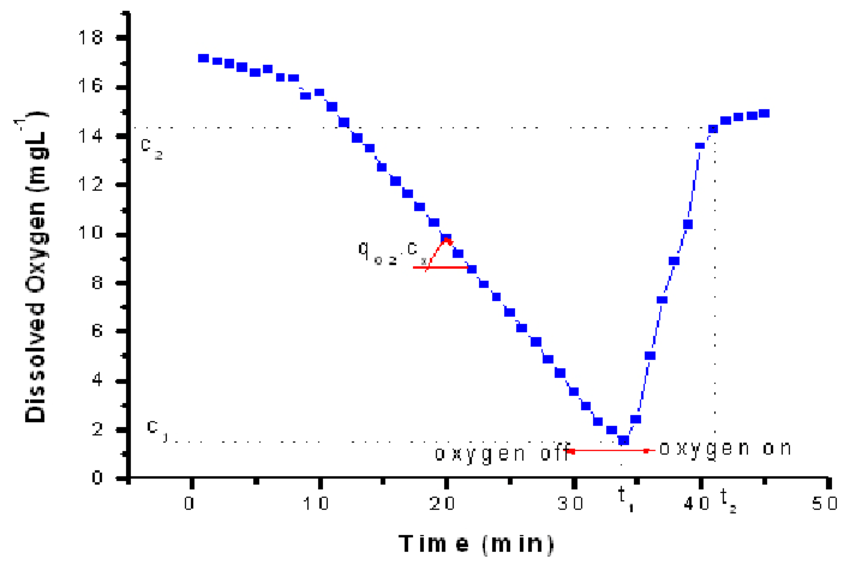 Typical results obtained during dynamic method for k L a