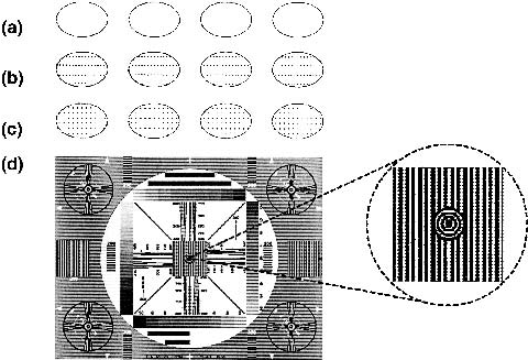 Template designs: (a) ring, (b) low-density dots, (c) high